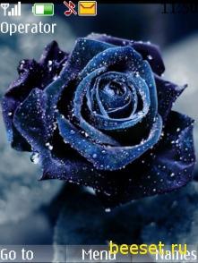 Тема для телефона Голубая роза + новое меню