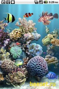 Тема для телефона aniPet Aquarium Live Wallpaper - анимированные обои