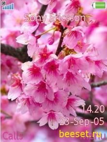 Тема для телефона Весна