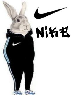 Картинка Кролик + Nike