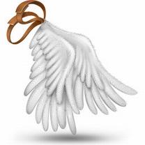 Картинка Крылья