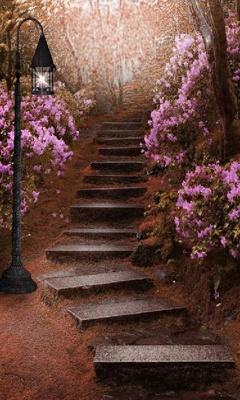 Картинка Райский сад