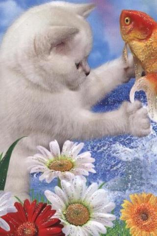 Картинка Кот и рыбка