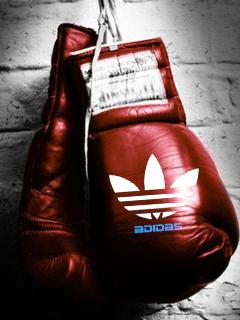Картинка Адидас+перчатки