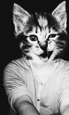 Картинка Человек с головой кота