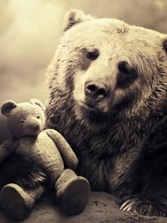 Картинка Медведи