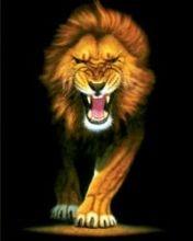 Картинка Fire Lion