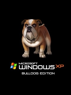 Картинка WindowsXP BullDog