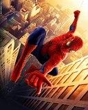 Картинка Spider Man