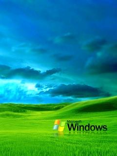 Картинка Window XP