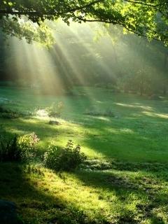 Картинка Beautiful_nature2