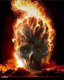 Картинка SKULL ON FIRE