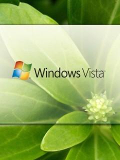 Картинка Vista
