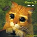 Картинка Кот из шрека