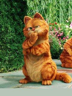 Картинка Garfield