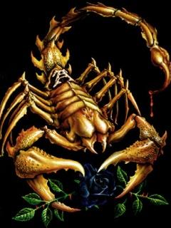 Картинка Scorpion