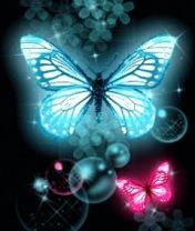 Картинка Бабочки