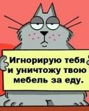 Картинка Наглый кот