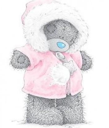 Картинка Тедди