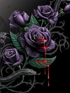 Картинка Кровоточащие розы