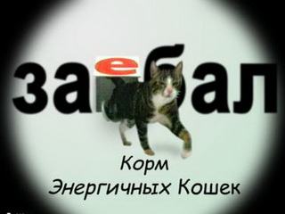Картинка Прикол