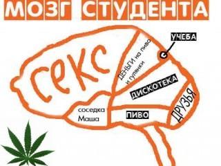 Картинка Мозг