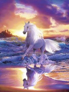 Картинка Красивые животные