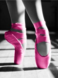 Картинка Обувь балетная