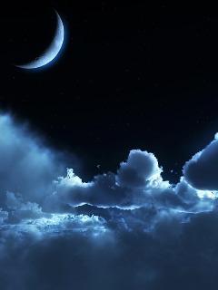 Картинка Лунная ночь