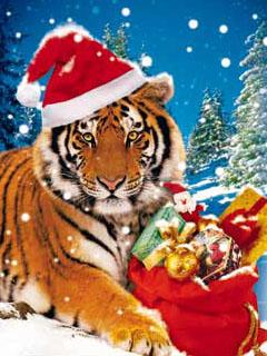 Картинка Новогодний тигр