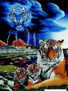 Картинка Тигры
