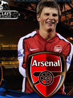 Картинка Arshavin(Arsenal)