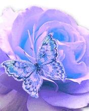 Картинка Бабочка и Роза 3