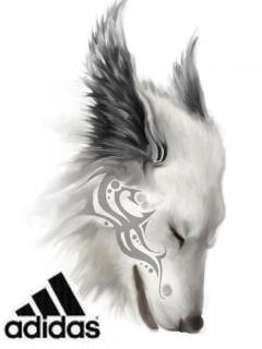Картинка Adidas tatu