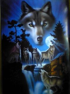 скачать фото на телефон волка