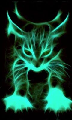 Кот светло-голубой