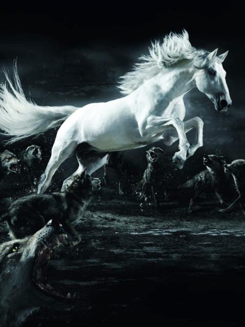 Картинка Лошади и волки