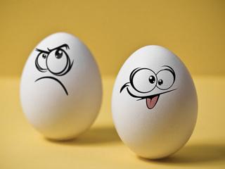 Картинка Яйца